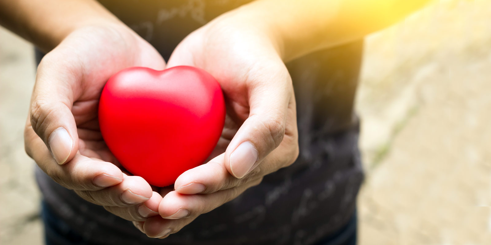 hands holding heart shaped object